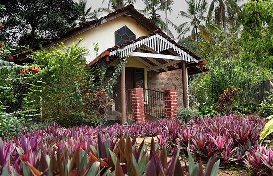 Entrance - Picture of Alath-Cad Estate Holiday Home, Ammathi - Tripadvisor