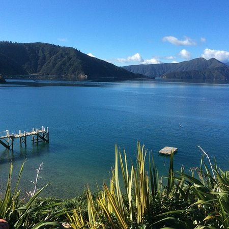 Marlborough Region, Nueva Zelanda: Stunning scenery from the lodge