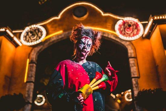 Bobbejaanland Halloween.Show Aaron Crow Halloween 2017 Picture Of Bobbejaanland