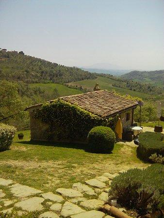 Pierantonio Photo