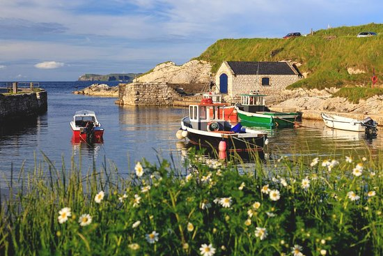 Causeway Coast & Glens, UK: Picture perfect little harbour