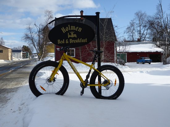Vasterbotten County, Sweden: Why not try one of rental FatBikes