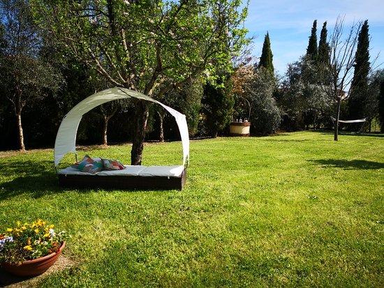 Orentano, Italia: IMG_20180420_154955_large.jpg