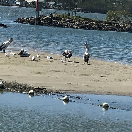 North Haven, Australia: photo3.jpg