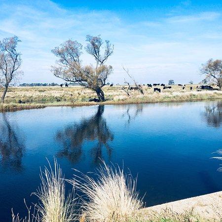 Evandale, Australia: photo0.jpg