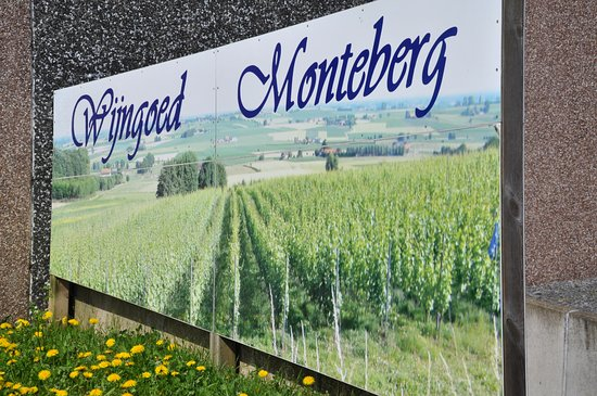 Wijngoed Monteberg