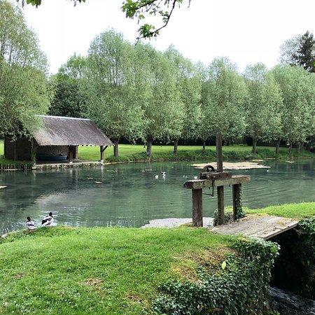 Monteaux, France: photo3.jpg