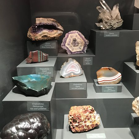 Bristol Museum & Art Gallery: Minerals and Animals