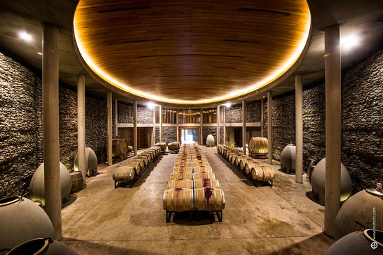 Equilibrio Restaurant Our fantastic underground wine cellar. & Our fantastic underground wine cellar. - Picture of Equilibrio ...