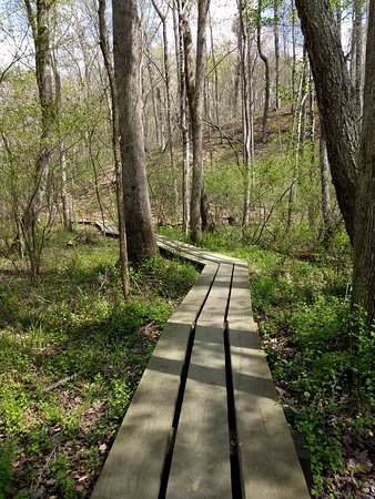 Boone's Cave Park: IMG_20180414_150546321_large.jpg