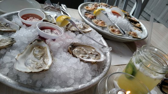 Kingston, NY: Oysters, clams, and the drink special!