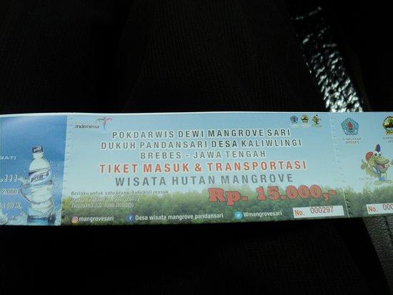 Harga Tiket Masuk Hutan Mangrove Rp 15 Ribu Yang Bisa Ditukar Air