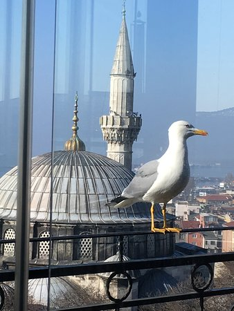 Ada İstanbul: uitzicht vanaf het dakterras (ontbijt)