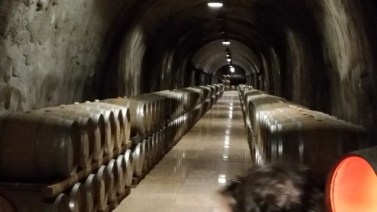 Cantina di Soave Photo