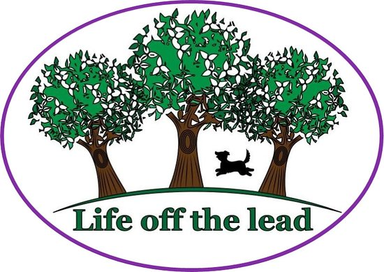 Life off the lead