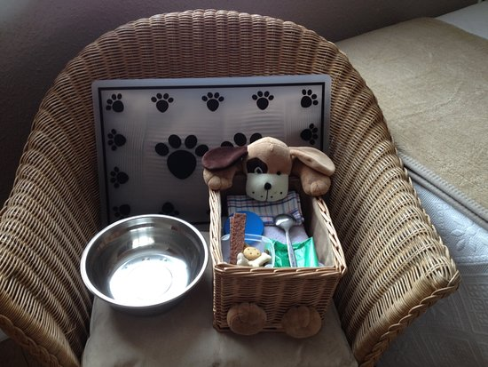 Witherslack, UK: Being truly dog friendly our canine guests get their own basket with some essentials and treats.