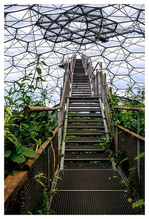 Eden Project To The Top Of Biome