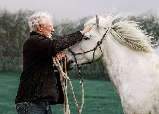 Akureyri, Islandia: The owner, Einar with his horse