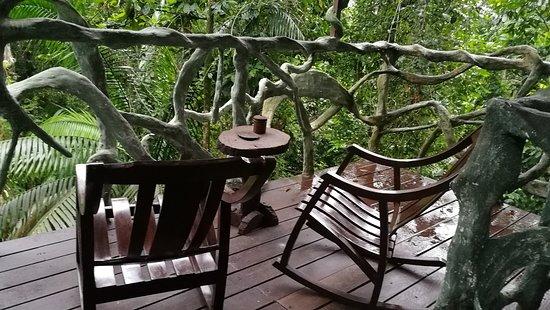 Terraza De Casa En El árbol Fotografía De Maquenque Eco