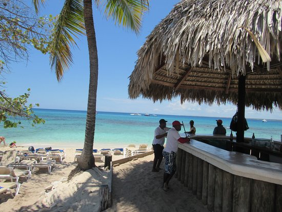 Isla Catalina: playa