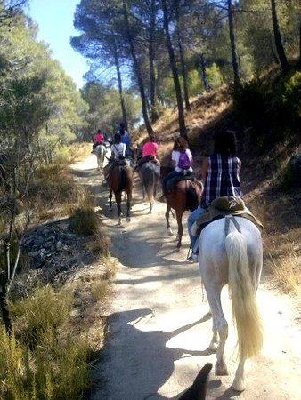 La Posada de Colomera y sus paseos a caballo
