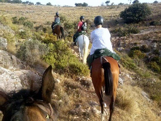 Colomera, Spain: Los paseos a caballo para todo tipo de jinetes o amazonas, con o sin experiencia