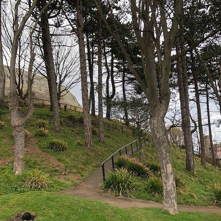 Happy Valley Gardens: photo2.jpg
