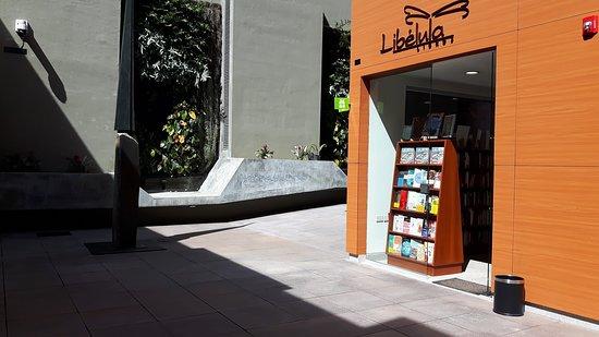 Libélula Libros