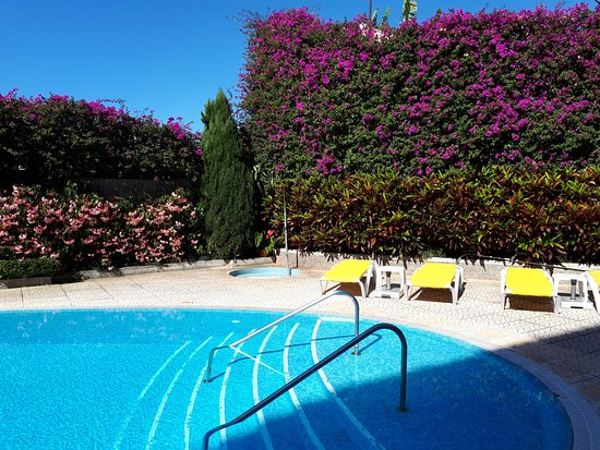 Hotel Albergaria Dias: Pool und Blumenhecke