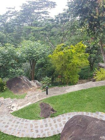 Beragala, Sri Lanka: 20180421_125013_large.jpg