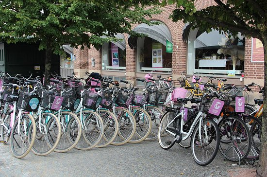 Malmo City Bike Rental