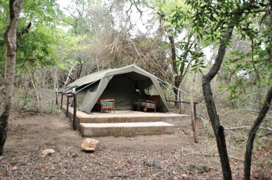4 Day Kruger Tented Safari