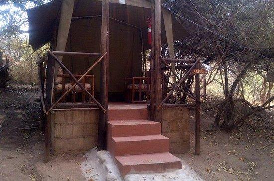 5 Day Kruger Tented Safari