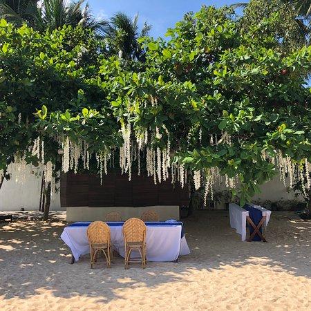 Stunning Republic Beach Resort: photo5.jpg