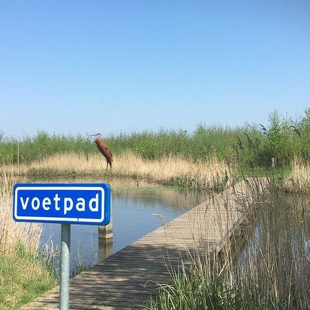 Ridderkerk, The Netherlands: photo3.jpg