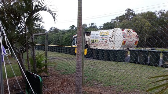 Woodgate, Australia: Every day is garbage day