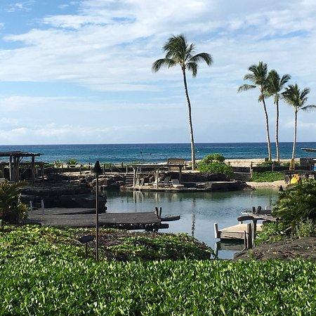 Four Seasons Big Island Hawaii Tripadvisor