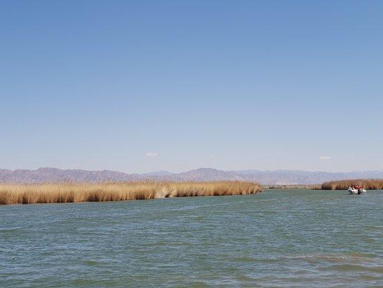 Hasuhai Lake: 內蒙哈素海景區