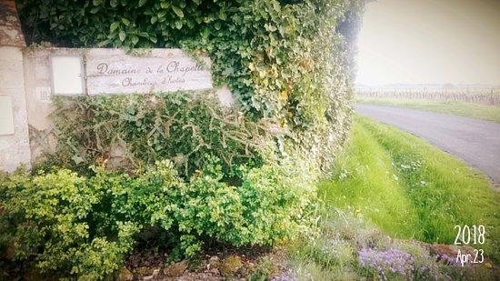 Faverolles-sur-Cher Foto