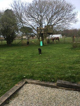 Scorrier, UK: Part of the garden area