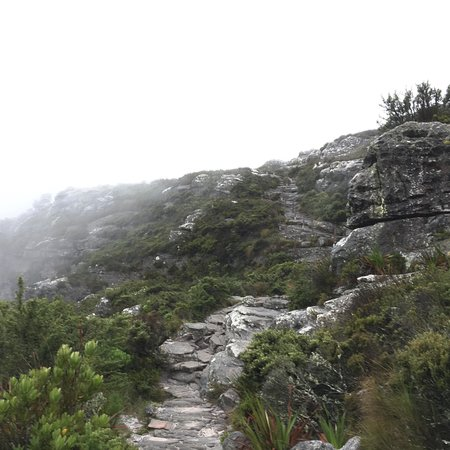Cape Town, South Africa: photo4.jpg