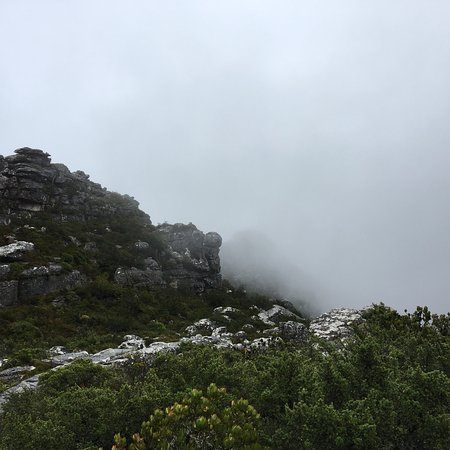 Cape Town, South Africa: photo5.jpg