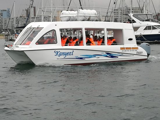Sarie Marais Pleasure Cruises: Kanyezi cruise 26 pax maximum, lovely for school tours