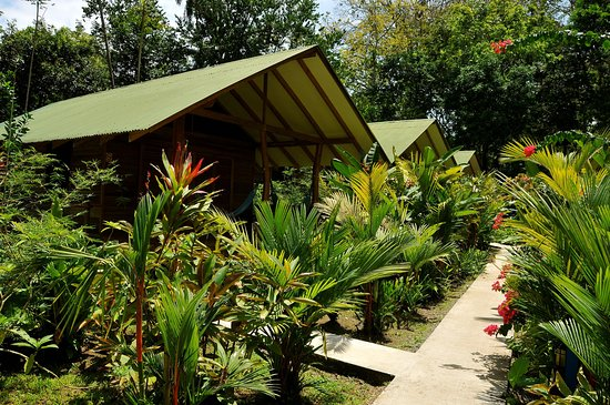 Cocles, Costa Rica: access and garden, a fantastic view from the bungalow