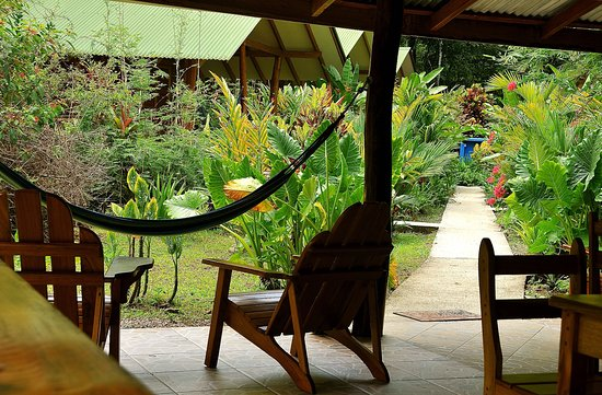 Cocles, Costa Rica: views from the breakfast area
