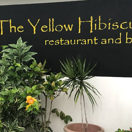 Vaimaanga, Islas Cook: The Yellow Hibiscus