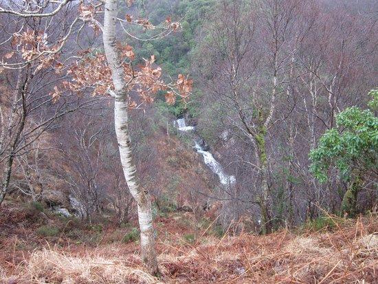 Onich, UK: inchree waterfalls