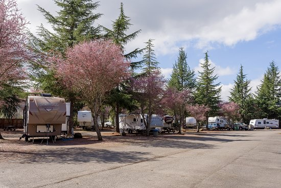Cottage Grove, OR: Stay in our RV Park and enjoy the hotel's amenities