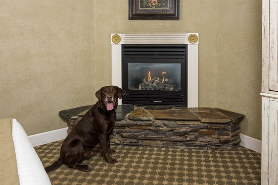 Cottage Grove, OR: Fireplace in the pet-friendly deluxe king room