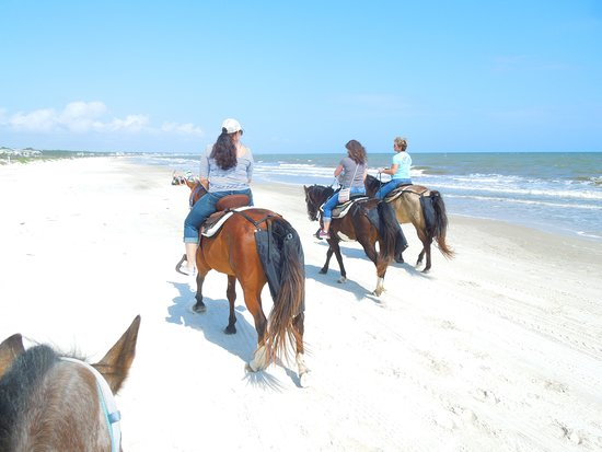 Sand N Spur Snorkeling Horseback Riding On The Beach